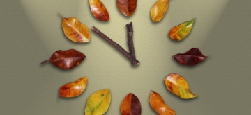 watch-1893395-feuilles
